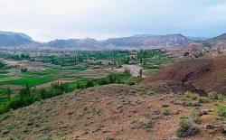 چرخبالهای ارتش تجمع طالبان را در منطقهی تمکی ولسوالی قرهباغ غزنی بمبارد کردند
