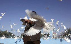 آیا افغانستان به صلح دست خواهد یافت؟