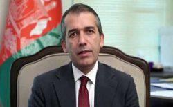 صدیق صدیقی: دولت افغانستان برای برقراری صلح پایدار متعهد است