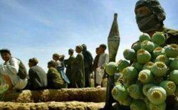 طالبان سالانه ۱٫۶ بیلیون دالر درآمد دارند