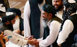 گروه طالبان مصالحهگر نیست!