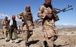 القاعده در پناه طالبان؛ امریکاییها بر سر هیچ توافق کرده اند