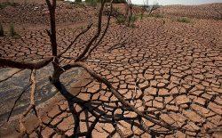 صحراگرایــی چیست و چرا در حال تشدید است؟