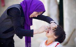 روند تطبیق خانهبهخانهی واکسین پولیو تا سه هفتهی دیگر آغاز میشود