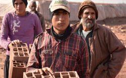 کارگر ارزان؛ سودی که همسایگان از تروریزم  به دست میآورند