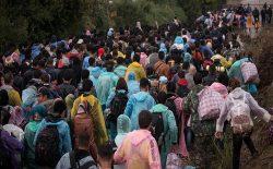 مردن برای هیچ؛ روایتی همدلانه از سفر بیبازگشت مهاجرت