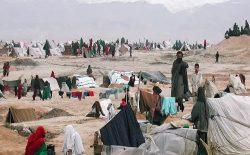 اوچا: در سال ۲۰۲۰ میلادی ۳۸۰ هزار نفر در افغانستان از خانههای شان بیجا شدند