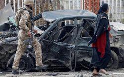 تجدید قوای القاعده زیر پوست طالبان