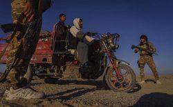 طالبان در تقلای شکست دادن حکومت