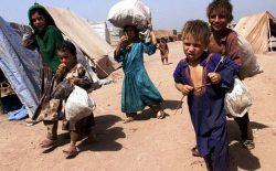 عفو بینالملل: گرسنگی و کرونا، زندگی حدود ۴ میلیون بیجاشدهی داخلی را در افغانستان تهدید میکند