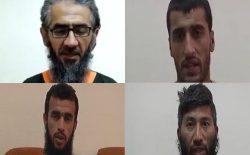 هستهی تبلیغ و جلبوجذب داعش در فاریاب بازداشت شد