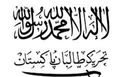 پاکستان و مشکلات دوگانهی مبارزه با تروریزم؛ تحریک طالبان پاکستانی در مرزهای افغانستان سربازگیری میکند
