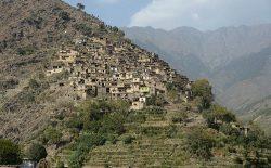 تفنگداران ناشناس یک فرماندهی پیشین طالبان را در ننگرهار کشتند
