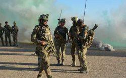 کشته شدن ۲۲ عضو شبکهی القاعده برای شبه قاره هند در هلمند