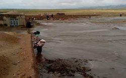 سیلاب در هرات ۱۲ کشته به جا گذاشت