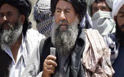 ملا عبدالمنان نیازی، معاون شاخهی انشعابی گروه طالبان در هرات زخمی شد