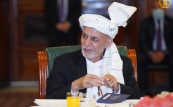 «غرب اگر به نوازش طالبان پایان بدهد،  راهی جز صلح ندارند»