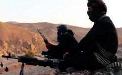طالبان و القاعده؛ دوقلویی تروریزم در افغانستان