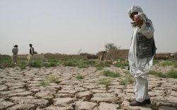 خشکسالی در کنار جنگ؛ کشاورزانی که گرسنگی درو میکنند