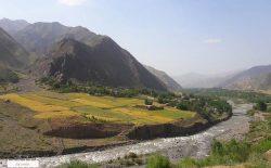 ولسوالی فرخار تخار به دست جنگجویان طالب سقوط کرد