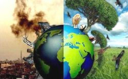 گرامیداشت از روز جهانی محیط زیست و هدفهایی که در افغانستان برآورده نشد