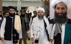 طالبان صلح نه، تسلیمی میخواهند