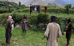 شورای امنیت سازمان ملل: حضور داعش در اطراف کابل افزایش یافته است