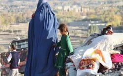 جنگ در افغانستان؛ تنها در یک ماه گذشته، ۳۲۳۸۴ خانواده از خانههای شان بیجا شده اند