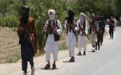 مسؤول رهبری جنگ طالبان در هرات کشته شد