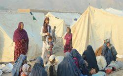 کمیشنر عالی پناهجویان سازمان ملل: آوارگی اجباری در افغانستان، ناشی از ناکامی سیاسی خواهد بود